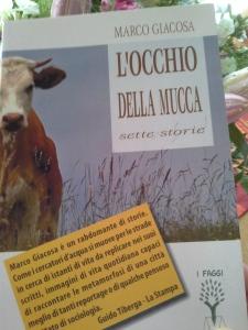 locchio-della-mucca